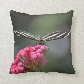 cabeza de la mariposa de la cebra en animal rosado cojín