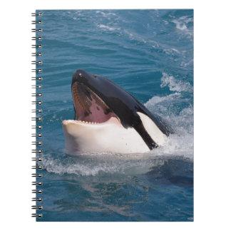 Cabeza de la orca libretas