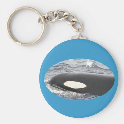Cabeza de la orca de la orca - óvalo llavero personalizado