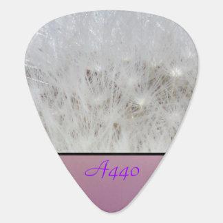 Cabeza de la semilla de flor del diente de león púa de guitarra