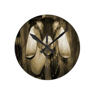 Cabeza de la sepia de la gama de Nubian en salir d Relojes