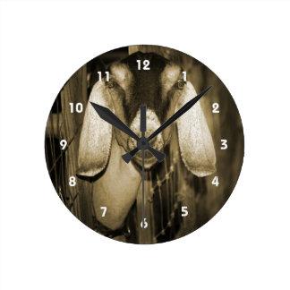 Cabeza de la sepia de la gama de Nubian en salir d Reloj