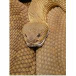 Cabeza de la serpiente de cascabel esculturas fotográficas
