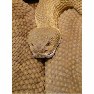 Cabeza de la serpiente de cascabel fotoescultura vertical