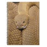 Cabeza de la serpiente de cascabel libros de apuntes