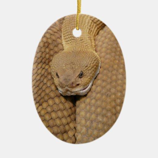 Cabeza de la serpiente de cascabel ornato