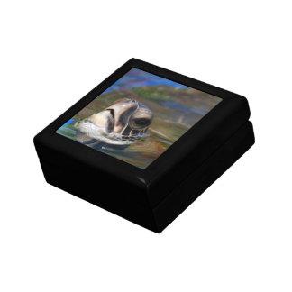 Cabeza de la tortuga cajas de joyas