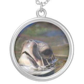 Cabeza de la tortuga joyerias personalizadas