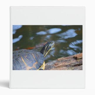 cabeza de la tortuga del agua del resbalador fuera