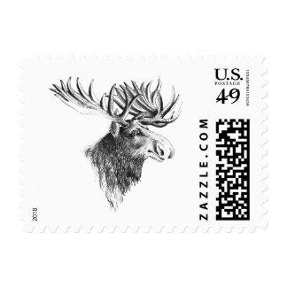 Cabeza de los alces timbre postal