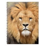 Cabeza de los leones libros de apuntes con espiral