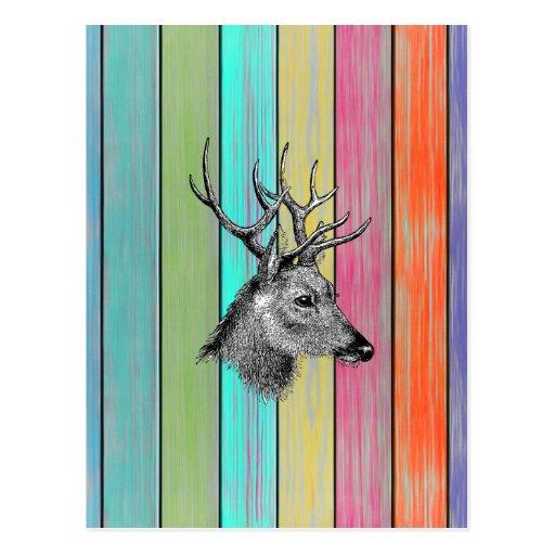 Cabeza de madera colorida de los ciervos del vinta postales