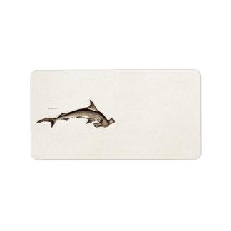 Cabeza de martillo del tiburón de Hammerhead de lo Etiqueta De Dirección