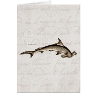 Cabeza de martillo del tiburón de Hammerhead de lo Tarjetas