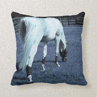 cabeza de pasto azul del caballo blanco abajo en cojín