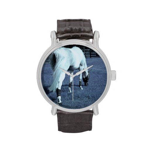 cabeza de pasto azul del caballo blanco abajo en h reloj de mano