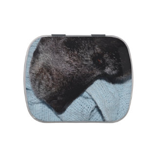 cabeza de perro negro en mascota animal canino de jarrones de caramelos