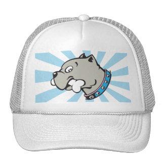 Cabeza de Pitbull del dibujo animado - gorra azul
