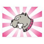 Cabeza de Pitbull del dibujo animado - postal rosa