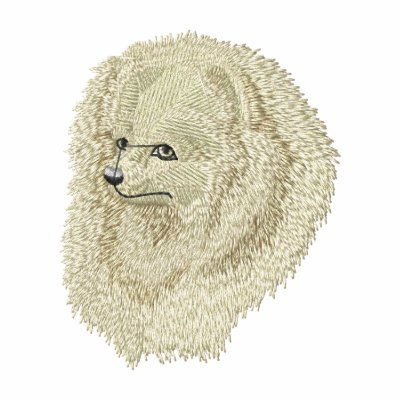 Cabeza de Pomeranian