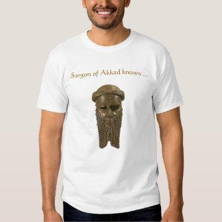 Cabeza de Sargon Akkadian Playera