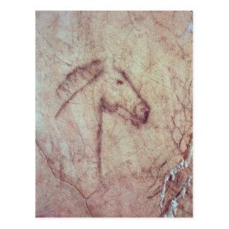 Cabeza de un caballo, del Cueva de la Pena Tarjetas Postales