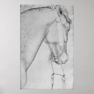 Cabeza de un caballo, el álbum de Vallardi Póster