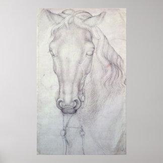 Cabeza de un caballo posters