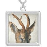 Cabeza de un ciervo de huevas collar plateado