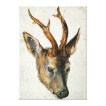 Cabeza de un ciervo de huevas impresión en lienzo