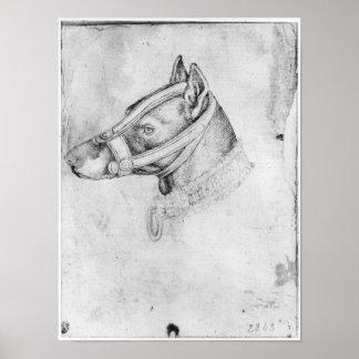 Cabeza de un perro abozalado póster