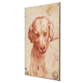 Cabeza de un perro impresión en lienzo