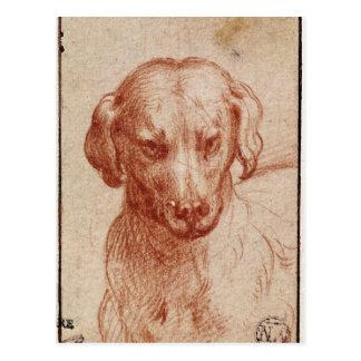 Cabeza de un perro postal