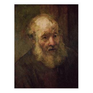 Cabeza de un viejo hombre, c.1650 postal