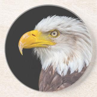 Cabeza del águila calva en negro posavasos cerveza