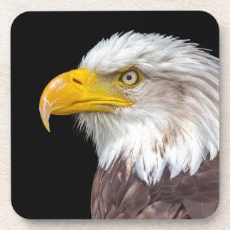 Cabeza del águila calva en negro posavasos de bebida