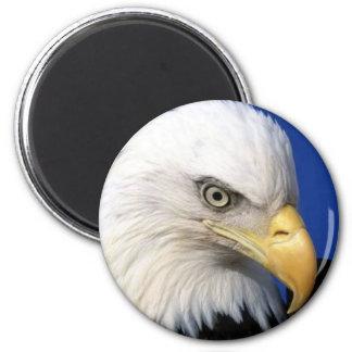 cabeza del águila imán redondo 5 cm