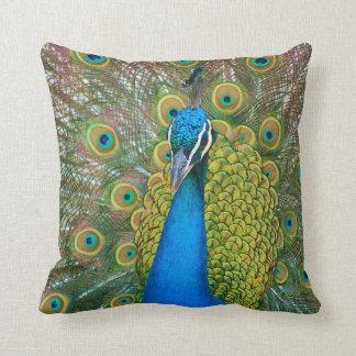 Cabeza del azul de pavo real con y plumas de cola cojin