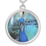 Cabeza del azul de pavo real en imagen colgante redondo