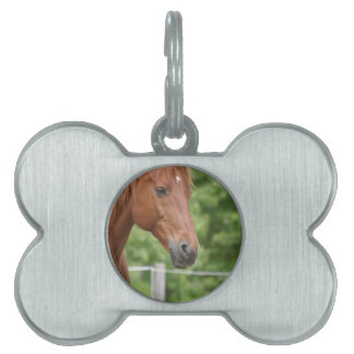 Cabeza del caballo marrón placa mascota