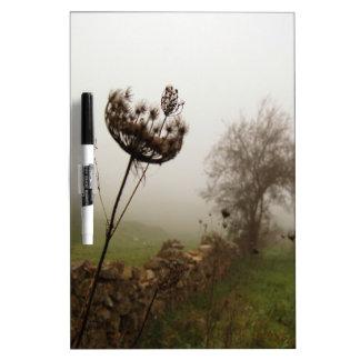 Cabeza del campo de la naturaleza en las nubes pizarras blancas de calidad