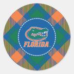 Cabeza del cocodrilo de la Florida a todo color Pegatina Redonda