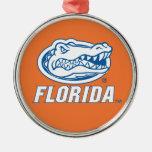 Cabeza del cocodrilo de la Florida Adorno Navideño Redondo De Metal