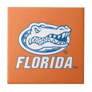 Cabeza del cocodrilo de la Florida - azul y blanco Azulejo Cuadrado Pequeño