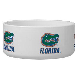 Cabeza del cocodrilo de la Florida - color Tazón Para Perro
