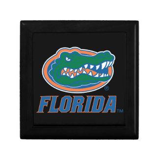 Cabeza del cocodrilo de la Florida - color Caja De Joyas