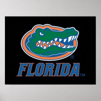 Cabeza del cocodrilo de la Florida - color Posters
