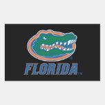 Cabeza del cocodrilo de la Florida - color Rectangular Pegatina