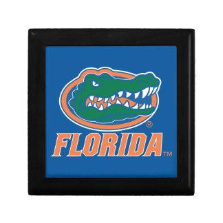 Cabeza del cocodrilo de la Florida Joyero Cuadrado Pequeño