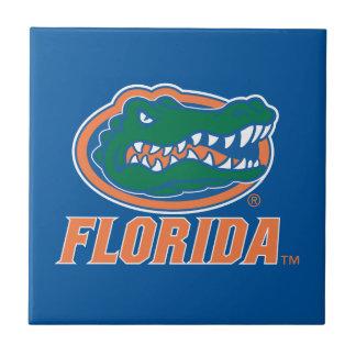 Cabeza del cocodrilo de la Florida - naranja y bla Azulejo Cerámica